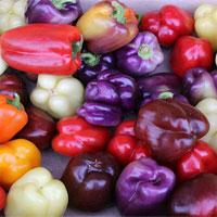 Sự thật mà bạn không ngờ tới về màu sắc của ớt chuông
