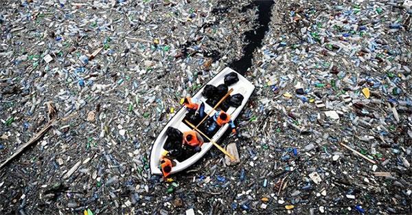 Thông thường nhựa sẽ trôi nổi trên mặt nước.
