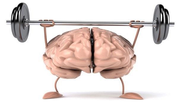 Chính các tế bào thần kinh non trẻ mới sinh ra sẽ giữ trọng trách bảo vệ cho bộ nhớ sau này.