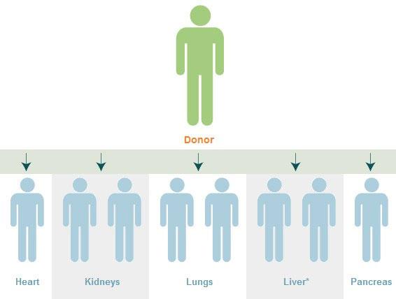 Một người hiến tạng có thể cứu sống 8 người khác, nhưng trong trường hợp hi hữu, điều ngược lại có thể xảy ra.