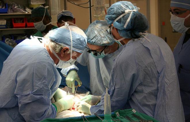 Trường hợp y tế chưa từng có ghi nhận 4 bệnh nhân lây ung thư sau khi nhận tạng ghép từ cùng một người.