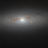 Ảnh nổi bật thiên hà NGC 4036 gây sửng sốt khoa học