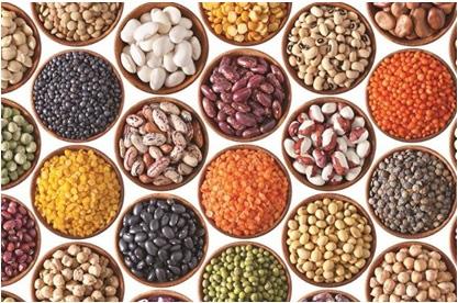Aflatoxin trong các loại ngũ cốc bị ẩm mốc