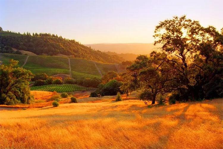 Thung lũng Sonoma (California, Mỹ)