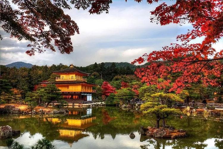 Vẻ đẹp của Kyoto hiện lên như bức tranh, khiến du khách không khỏi bị thu hút.