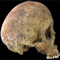 Bí mật trong ngôi mộ cổ với các bộ xương cắt rời