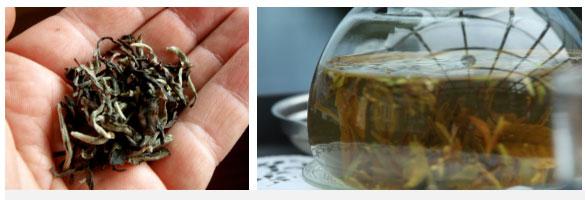 Bình trà Silver Tips Imperial, hay còn gọi là Oolong huyền bí.