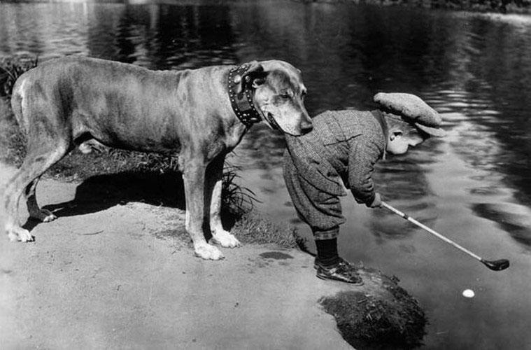 Chú chó bảo vệ cậu bé không bị rơi xuống hồ nước khi cố gắng lấy trái bóng. Ảnh chụp năm 1920.