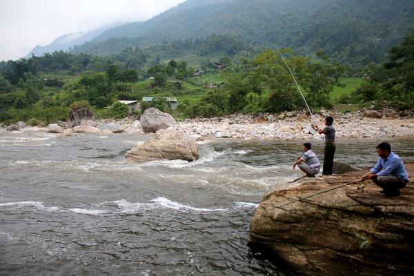 Các cần thủ săn loài cá quý như vàng trên suối La Ve.