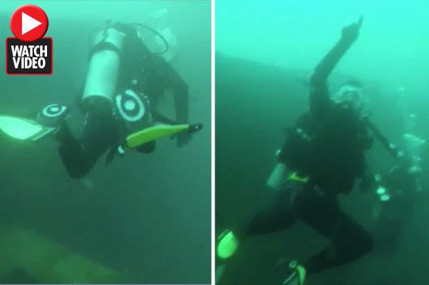 Thợ lặn hốt hoảng khi nhìn thấy cá voi đồ sộ.