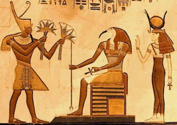 3 loại hoa sen được trồng phổ biến ở Ai Cập thời cổ đại là sen trắng, sen xanh và sen hồng.