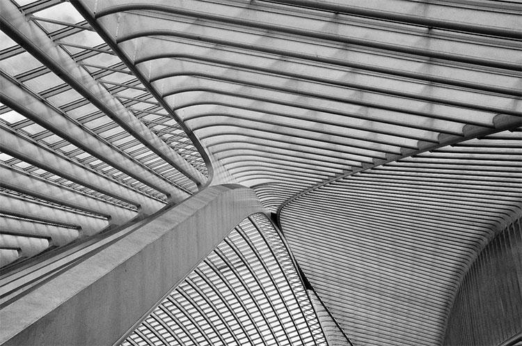 Trần nhà của nhà ga Liège-Guillemins ở Bỉ do Santiago Calatrava thiết kế.