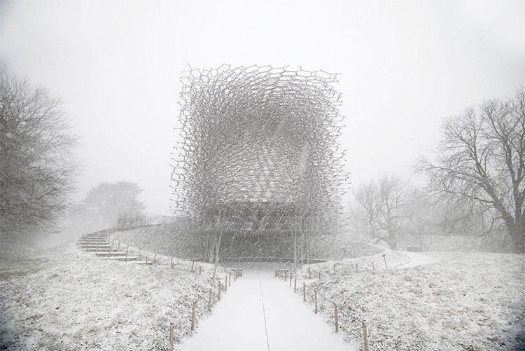 Bức ảnh chụp bởi Jeff Eden tại Vườn thực vật hoàng gia Kew, Anh Quốc vào mùa đông