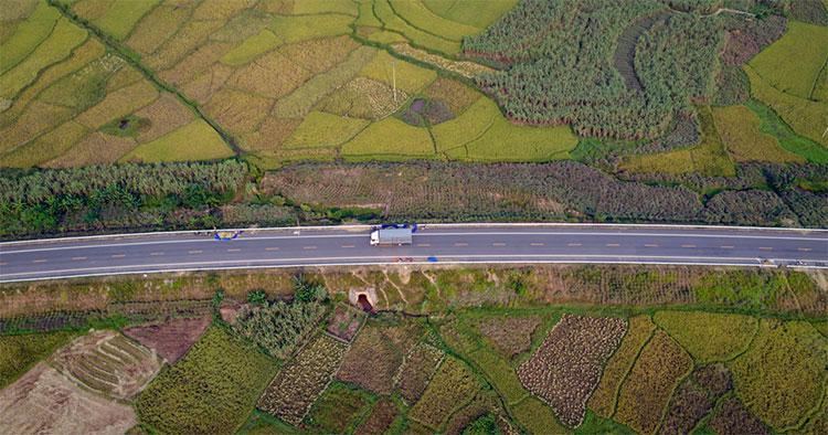 Tháng 10, đang là thời điểm các cánh đồng ở miền Bắc bước vào mùa thu hoạch.