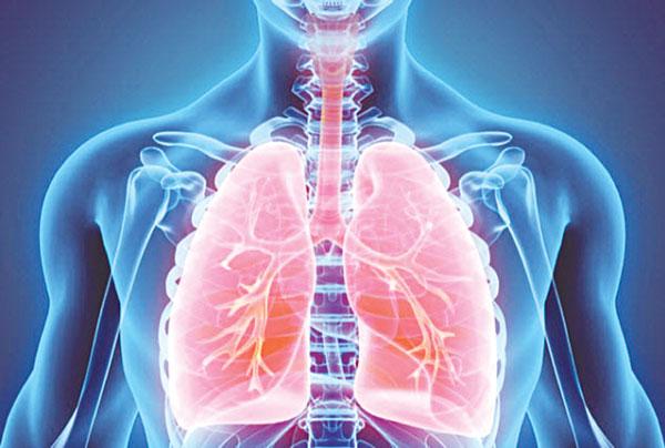 Nhờ tế bào gốc hy vọng sẽ khắc phục tình trạng thiếu hụt nguồn hiến tạng
