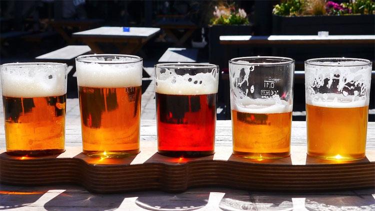 Trong thành phần của bia có các chất tác động tích cực đến sức khỏe con người.