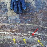 """""""Hóa thạch"""" 3,7 tỷ năm tuổi lại một lần nữa gây sốc vì có vẻ đó chỉ là đá bình thường"""