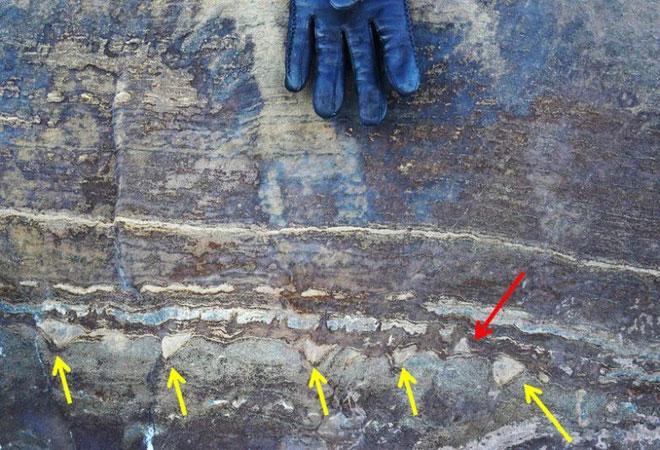 Đá hóa thạch này thực chất chỉ là đá thông thường.