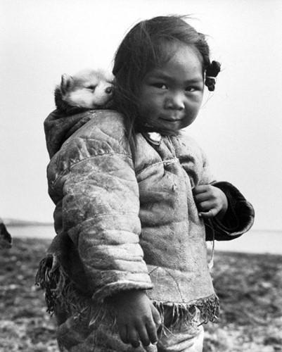 Bé gái người Inuit bên chú chó Husky đáng yêu năm 1949