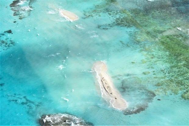 Đảo Đông thuộc Hawaii từng đóng vai trò quan trọng đối với các sinh vật hoang dã.