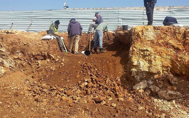 Một góc khác của khu vực khai quật