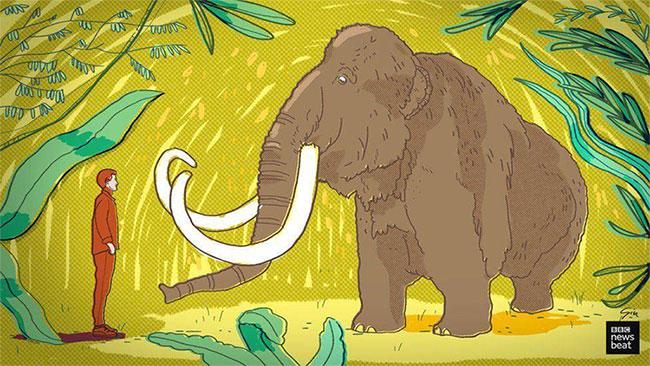 Hồi sinh những sinh vật tuyệt chủng là một phần quan trọng của cuộc chiến chống biến đổi khí hậu.