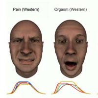 Sự khác biệt về biểu cảm khuôn mặt lúc đau đớn và... cực khoái giữa các nền văn hóa