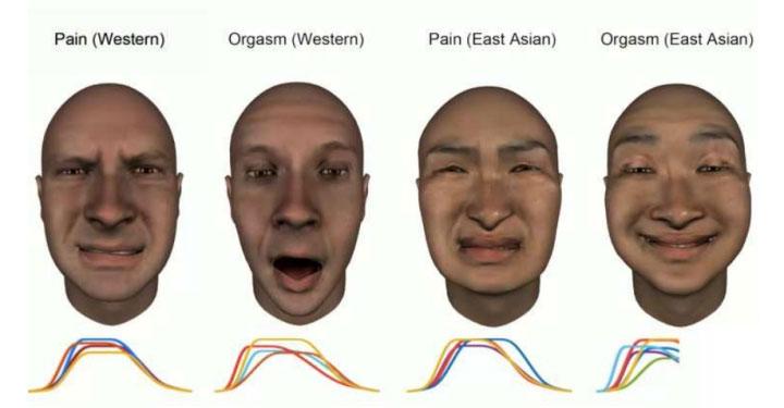 Biểu cảm khuôn mặt khi cực khoái và đau đớn trong các nền văn hóa khác nhau.