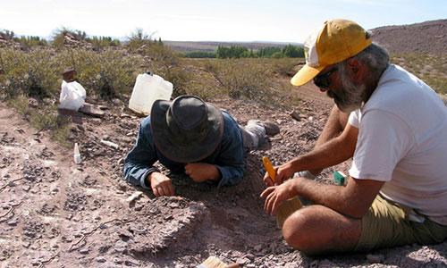 Địa điểm nơi hóa thạch được tìm thấy từng là sa mạc khô cằn.