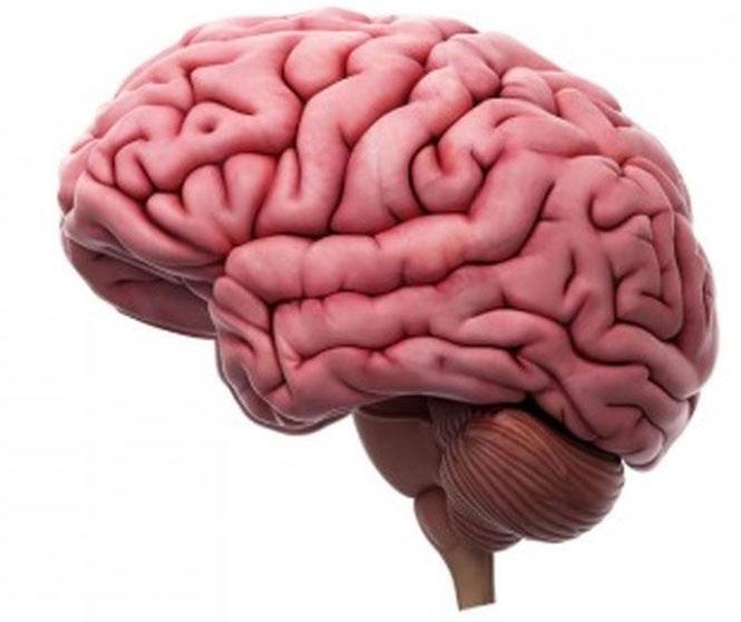 Loai bỏ một nửa bán cầu não để chữa bệnh động kinh.