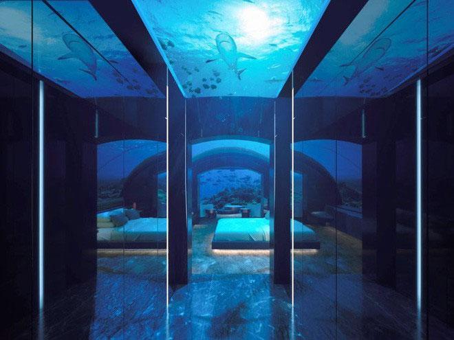 Phần đặc biệt nhất có lẽ là tầng dưới, nơi du khách chìm sâu dưới đáy biển