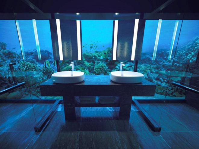 Thậm chí, bạn cũng có thể vừa rửa tay, vừa ngắm cá bơi.