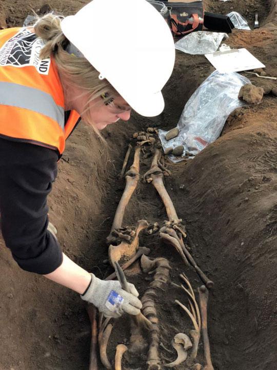 Một bộ hài cốt được khai quật tỉ mỉ bằng cọ