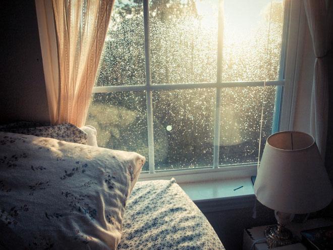 Nơi trong nhà tiếp xúc với ánh sáng mặt trời có khả năng chứa ít vi khuẩn hơn những nơi tối.