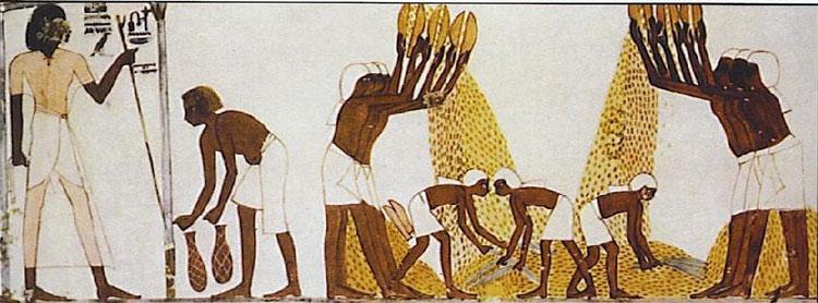 Nô lệ Ai Cập