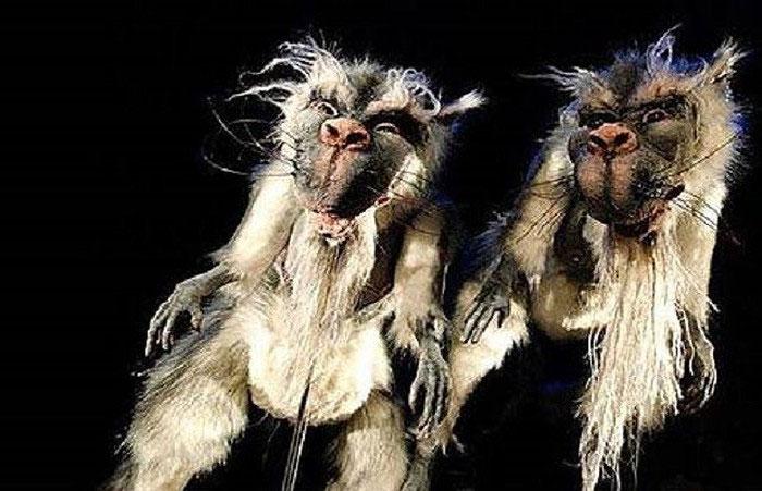 Theo truyền thuyết, Bunyip có thể săn cả phụ nữ và trẻ em.