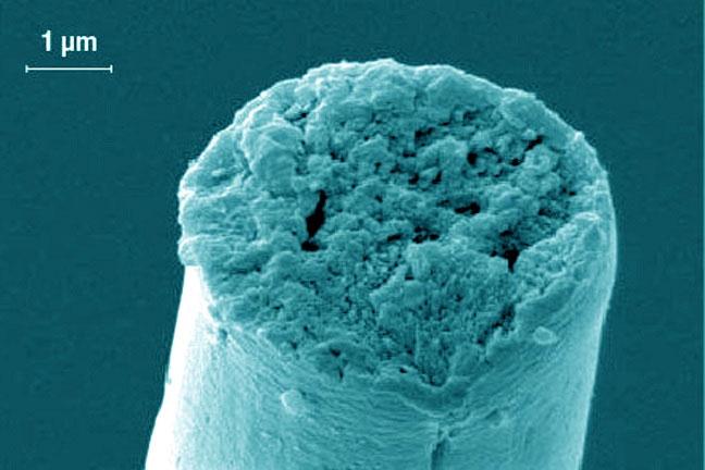 Sợi tơ nhện nhân tạo của Đại học Washington.