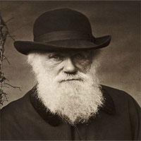 Những chuyện khó tin về cha đẻ thuyết tiến hóa