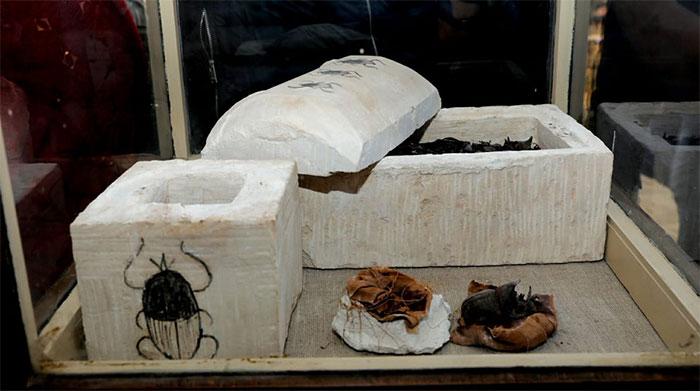 Xác ướp bọ hung cũng được tìm thấy.