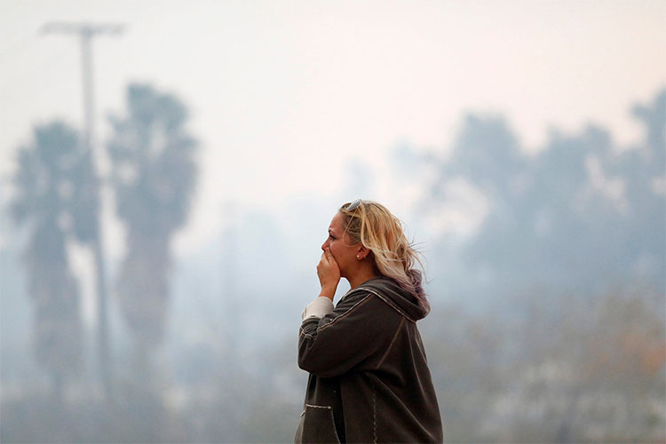 Ít nhất 7 người được tìm thấy chết cháy trong xe ô tô gần những đám cháy rừng.