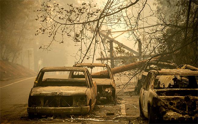 Những chiếc xe cháy rụi bên đường.
