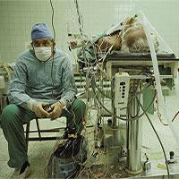 Sự thật bức ảnh thay đổi thế giới và lịch sử y học 30 năm trước