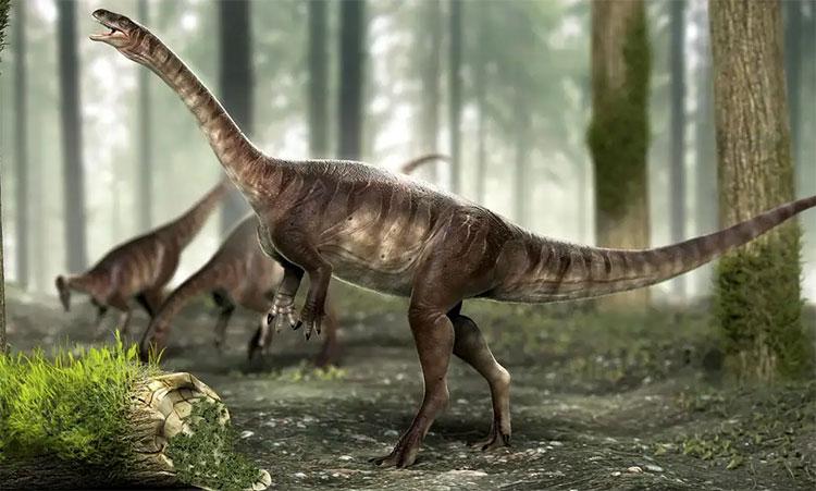 Hình phục dựng loài khủng long mới.