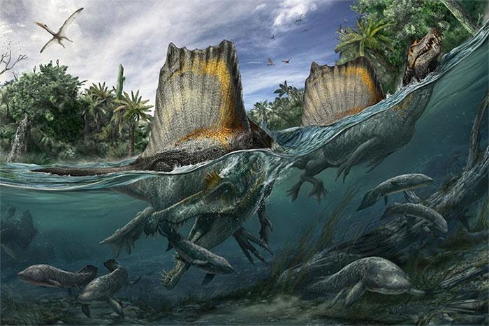 Spinosaurus rất thích ăn cá.