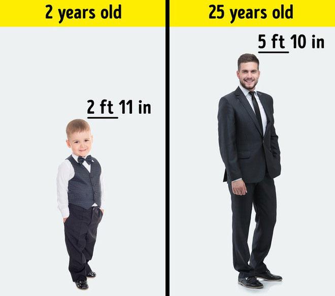 Về chiều cao, thông thường người cha sẽ gây ảnh hưởng này nhiều hơn so với mẹ.