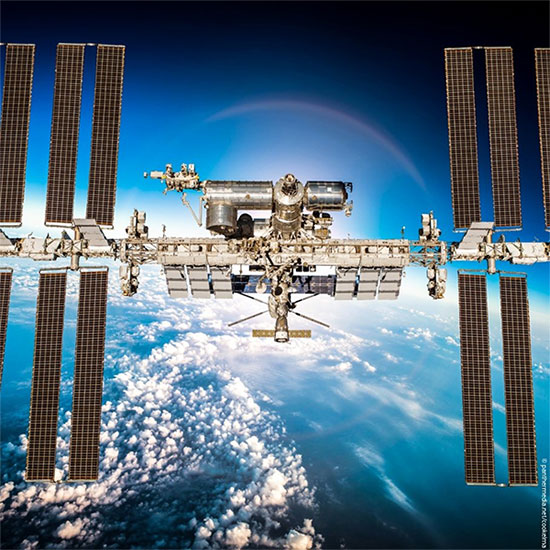 Các nhà khoa học đã tìm thấy năm loại vi khuẩn đường ruột khác nhau trên ISS
