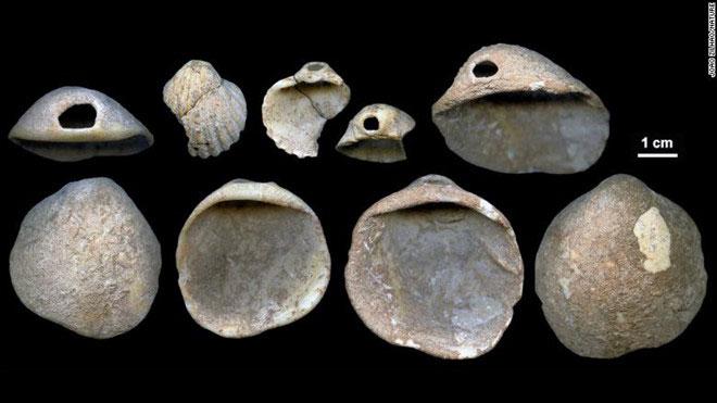 Một số vật dụng được làm bằng vỏ sò được tìm thấy ở Tây Ban Nha có niên đại 115.000 đến 120.000 năm.
