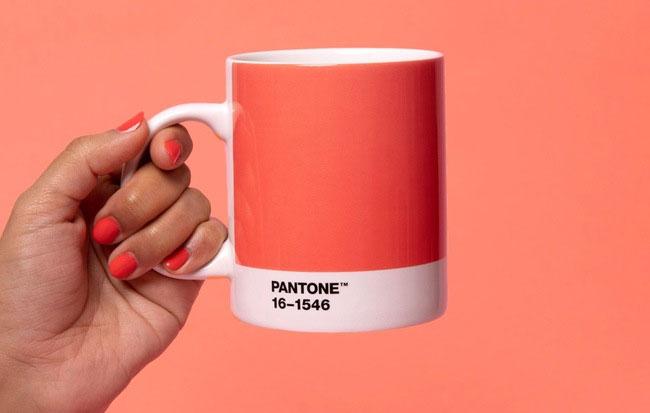 Màu sắc của năm 2019 - PANTONE 16-1546 TPX Living Coral.