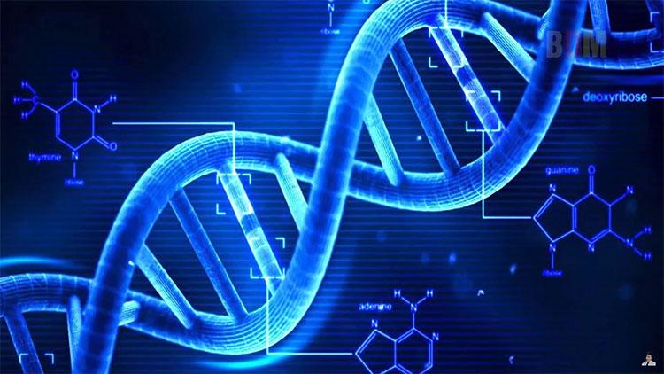 Đây là dự án về hệ gene được cho là có quy mô lớn nhất Đông Nam Á