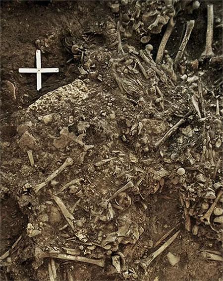 Mầm bệnh dịch hạch có thể đã tàn phá các khu định cư trên khắp châu Âu từ cuối thời kỳ đồ đá.